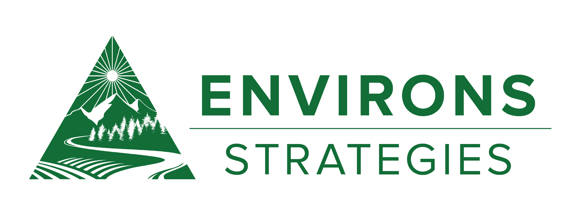 Environs Strategies, LLC